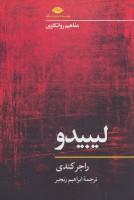 لیبیدو (مفاهیم روانکاوی)
