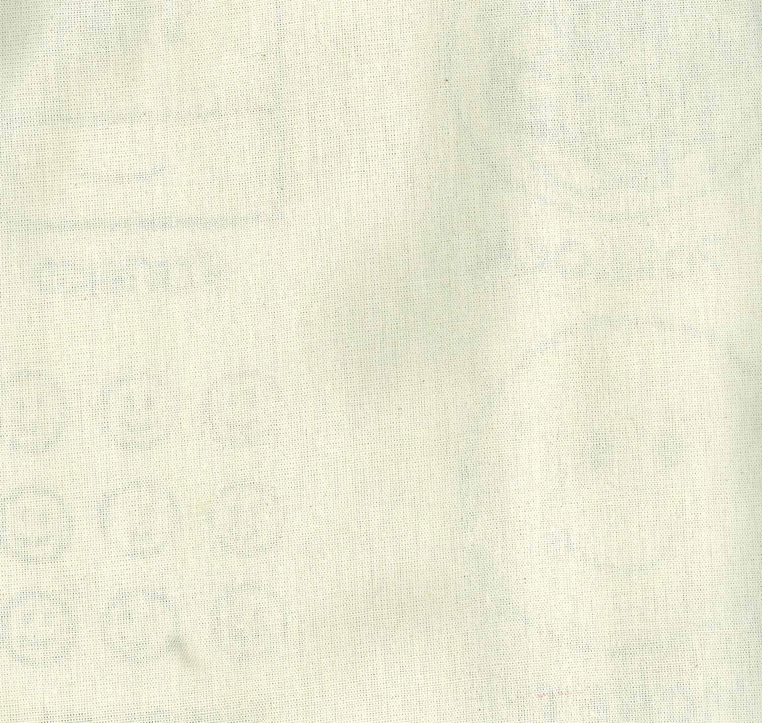 کیف پارچه ای (تاریخ هنر)