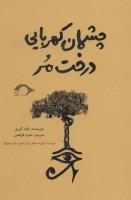 چشمان کهربایی درخت مر