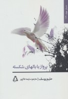 پرواز با بالهای شکسته (داستان جهان163)