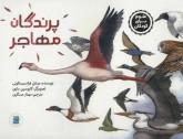 پرندگان مهاجر (علوم برای کودکان)،(گلاسه)