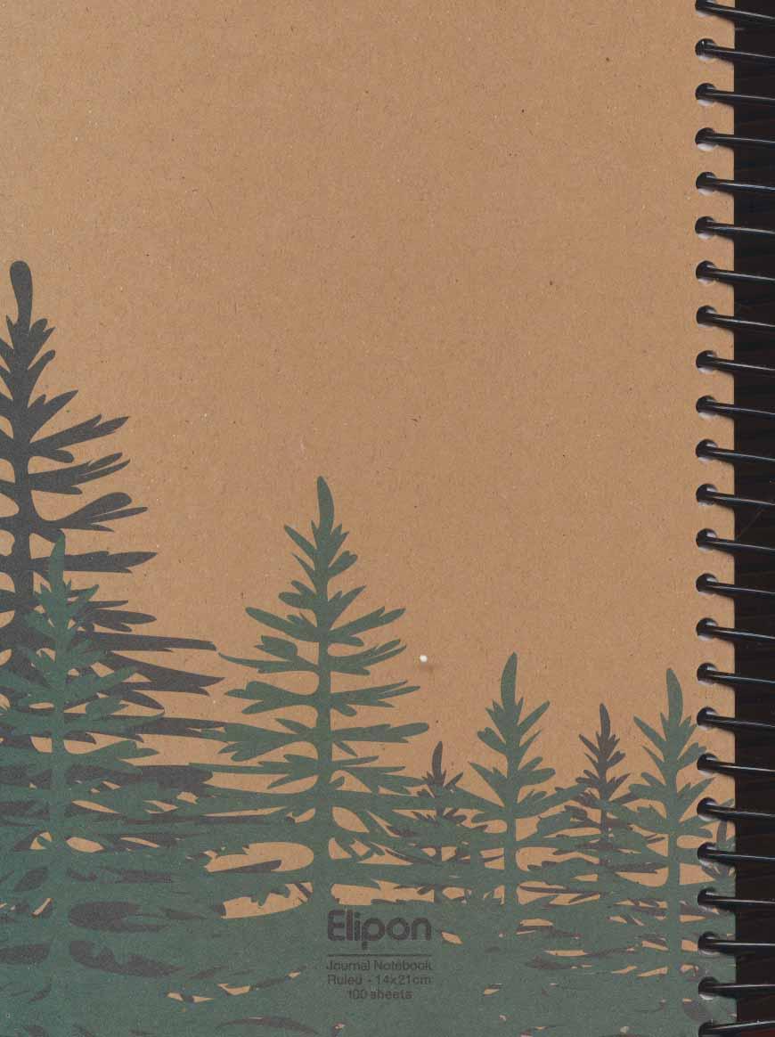 دفتر یادداشت خط دار فانتزی کرجی 100 برگ (4طرح،کد 27568)،(سیمی)