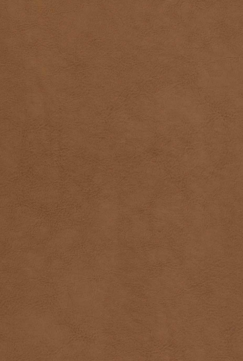 شاهنامه فردوسی (2جلدی،باقاب،چرم،لیزری)