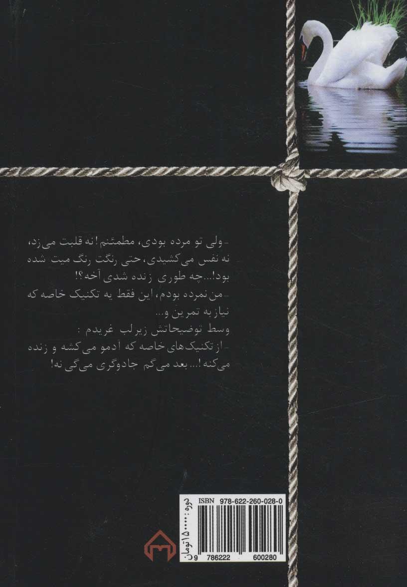 در پس نقاب (2جلدی)