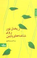 ریختن نور روی شاخه های پایین (داستان ما،رمان ایرانی19)