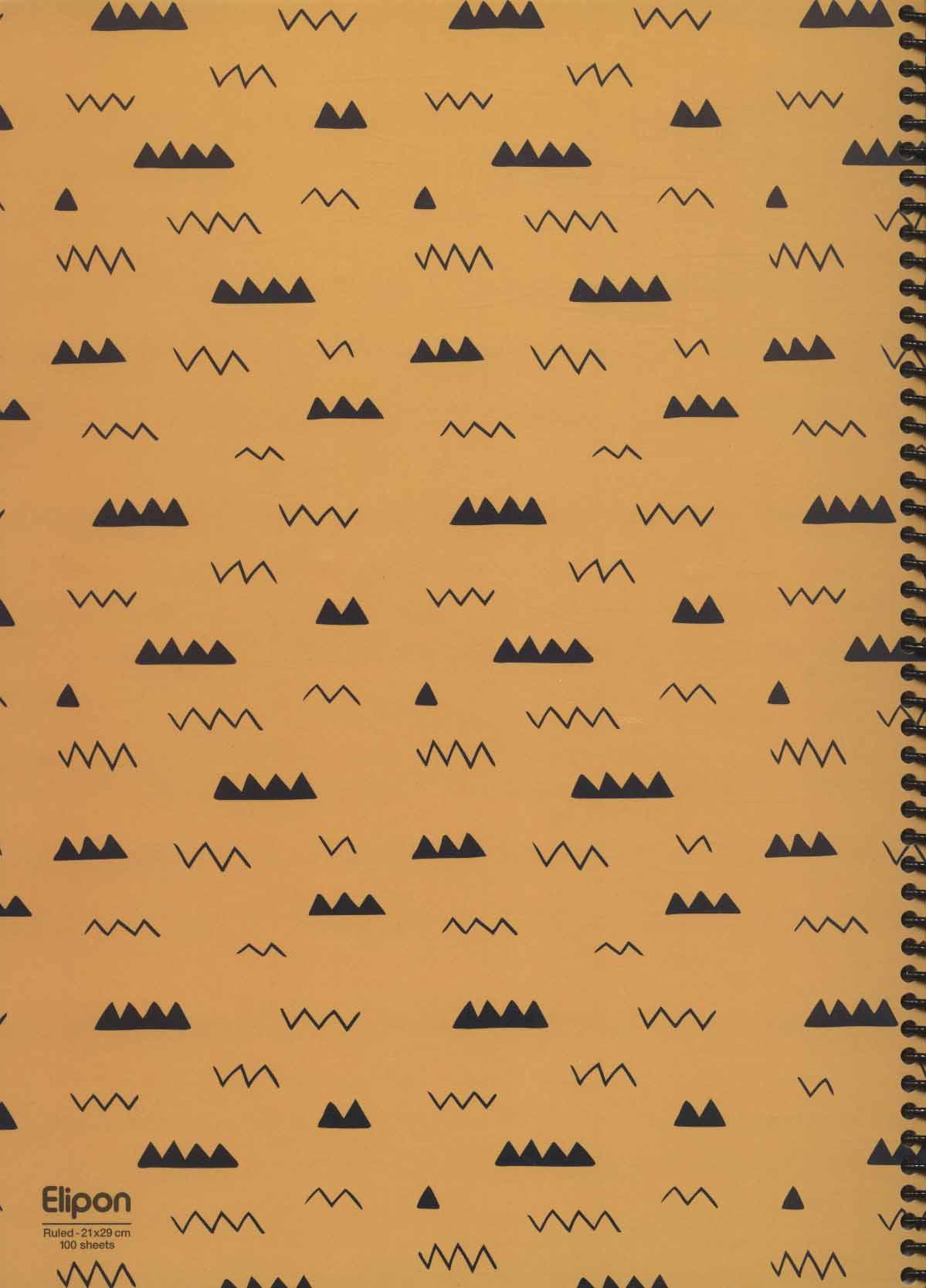 دفتر یادداشت خط دار فانتزی 100 برگ (3طرح،کد 245)،(سیمی)