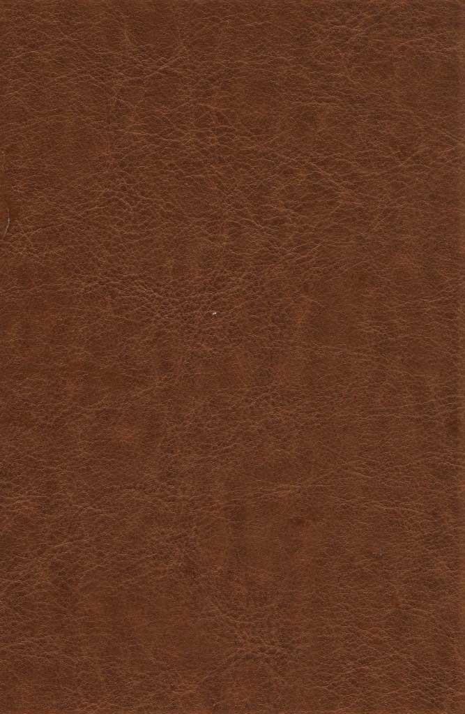 دیوان حافظ شیرازی (همراه با متن کامل فالنامه)،(ترمو،باقاب،پلاک دار،لیزری)