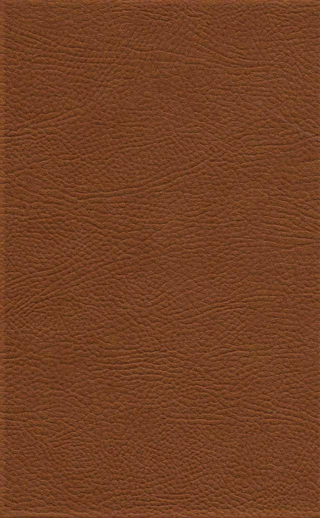 نهج البلاغه،همراه با خطبه بی نقطه شاهکار علی (ع)/خطبه بی الف علی (ع)،(3جلدی،باقاب،ترمو،لیزری)