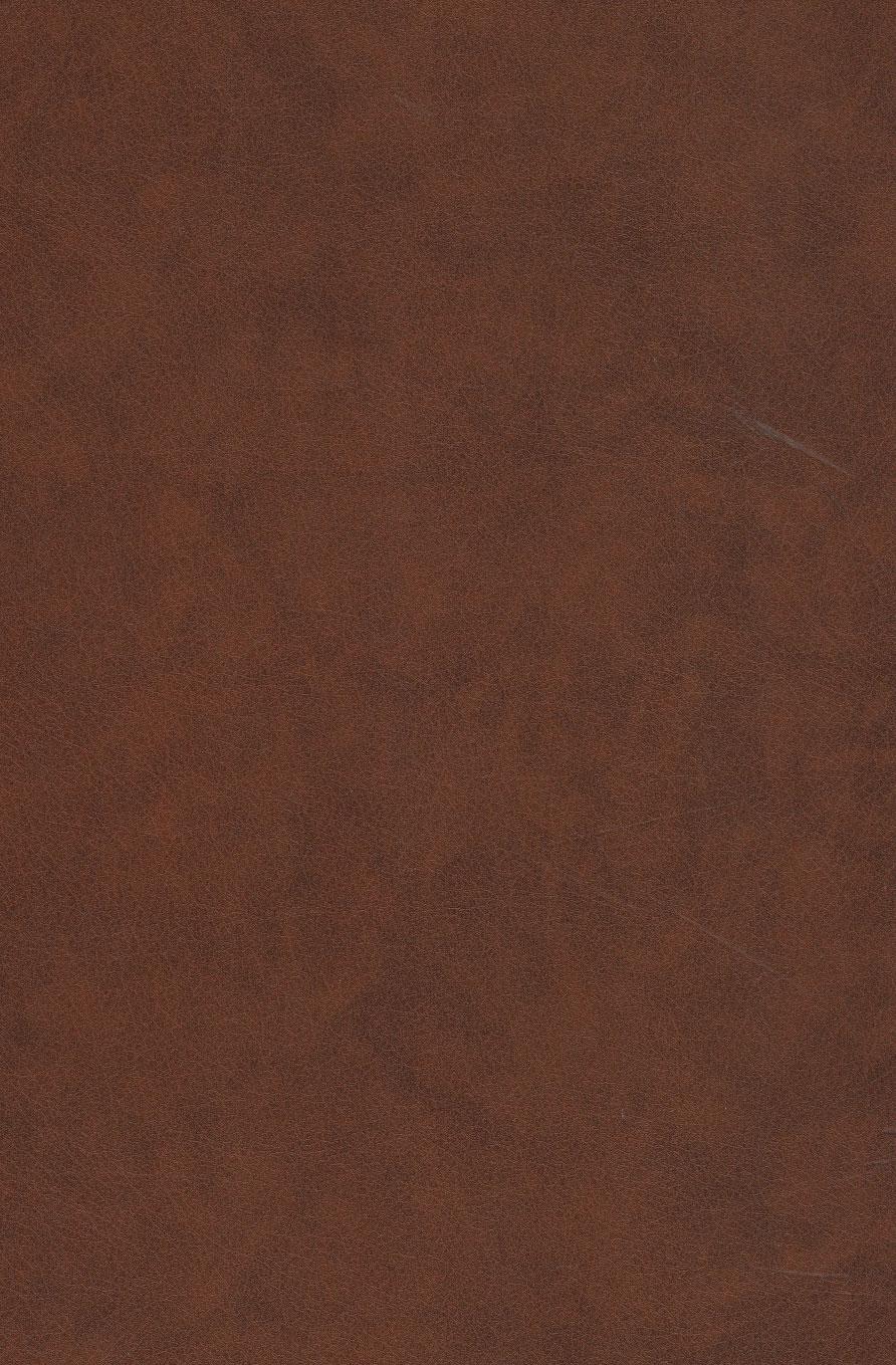 سمک عیار (6جلدی)